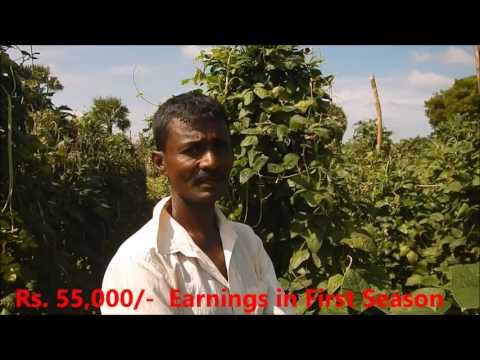 Drip Irrigation Kit - 500 Sqm - 12 Cents