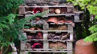 Visit to Fenleigh Garden