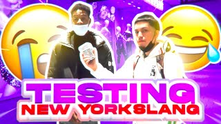 TESTING NEW YORK SLANG ON REAL NEW YORKERS!!! PUBLIC INTERVIEW