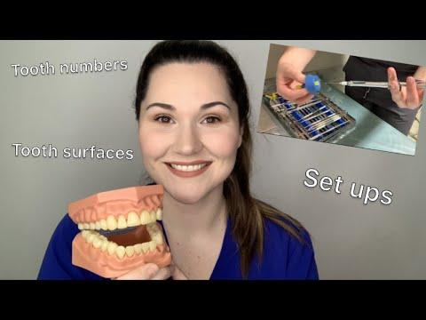 Dental assisting 101: The basics - YouTube