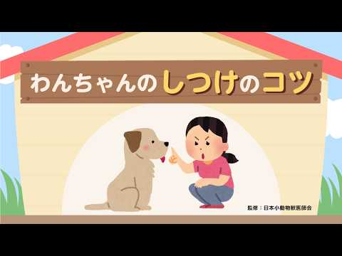 サンプル動画「わんちゃんのしつけのコツ」のサムネイル