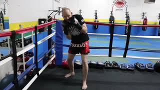 Evading Punches Tutorial