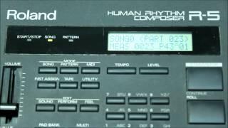 Roland R-5 Human Rhythm Composer Factory Demo Song And Preset Pad Banks