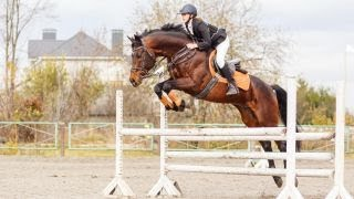 Equestrian Clothing Line Nets 16-year-old More Than 40K