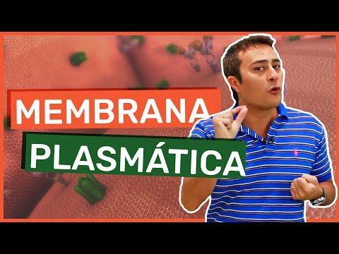 Membrana Plasmática | Célula | Prof. Paulo Jubilut