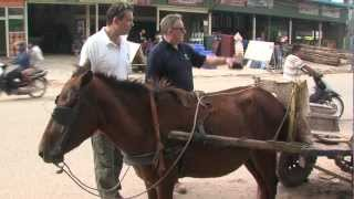 preview picture of video 'New partnership helps Cambodia's sports and working ponies'