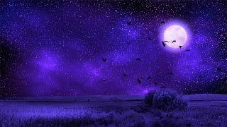 Meditation Sleep Music 432Hz | Sleeping Deeply | Meditative Music Healing | Positive Energy Sleep
