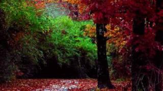 Moses Quran English Audio Translation Chapter Ta Ha Part 3
