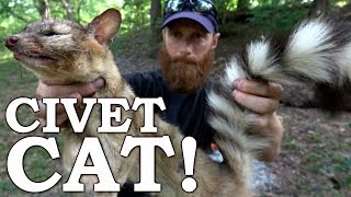 Catch and Cook RING-TAILED CAT & Cactus Nopals! Ep03   100% WILD Food SURVIVAL Challenge!