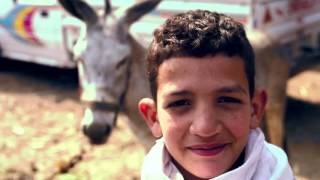 A Day In The Life Of An Egyptian Village
