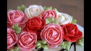 Роза кустовая крем грация