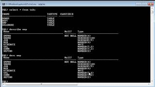 Day-2:Connect to Oracle Sql Plus and fetch Records (hindi)