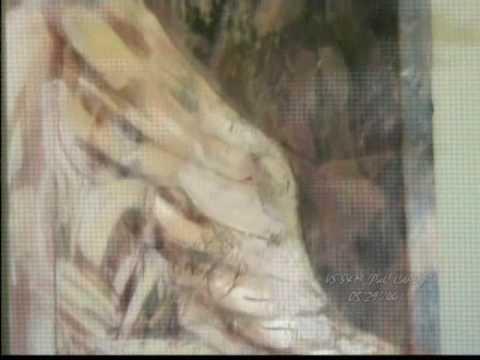immagine di anteprima del video: 09-11-08 SAPORI D´AUTUNNO