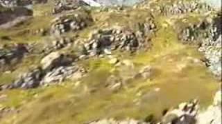 Para Todos Los Gustos - En Concierto - Luis Silva  (Video)