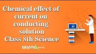 Class 8 Science