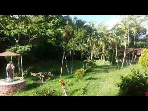 Fincas y Casas Campestres, Venta, La Unión - $290.000.000