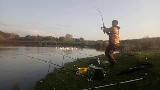 Рыбалка в башкирии на карпа и сазана