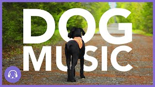 Dog Music: 10 Hours of Deeply Relaxing Sleep Music!