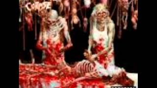 Cannibal Corpse - Brain Removal Police