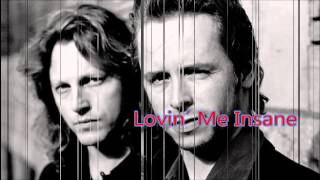 The Rembrandts - Lovin´ Me Insane