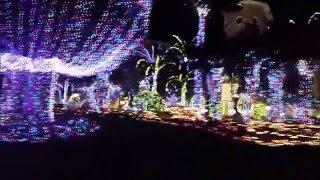 Hutchinson Island Mansion Christmas Lights - Jensen Beach FL