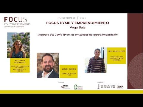 Sesión Impacto del Covid19 en las empresas de agroalimentación - Focus Pyme Vega Baja 20[;;;][;;;]