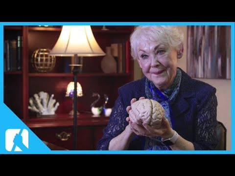 Meet Your Marvellous Brain - The Incredible Journey