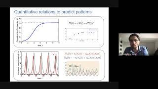 "<span class=""fs-sm"">Colóquio de Física UFABC - 11/03/2021 - Ricardo Martinez Garcia&nbsp;(ICTP-SAIFR &amp; IFT – UNESP)</span>"