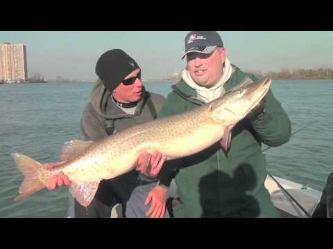 Musky Fishing Adventures – Keyes Outdoors 2012 - KO 1st Show Motor City Muskies Part 1 Master
