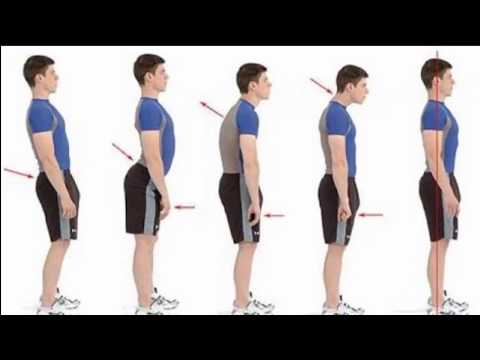 Serie di esercizi per un dorso a scoliosis figurativo s