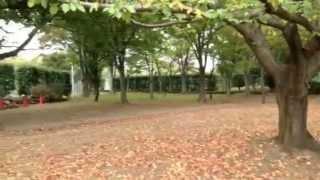 杉戸西近隣公園のイメージ