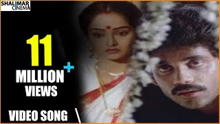 Majnu Movie || Idi Tholi Raatri Video Song || Nagarjuna, Rajini