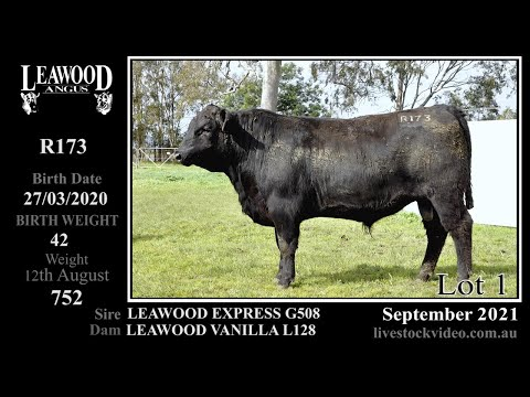 LEAWOOD EXPRESS R173