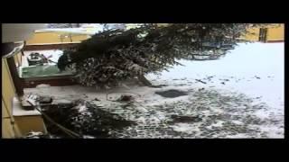 preview picture of video 'Stavění vánočního stromku v pivovaru Purkmistr Plzeň aneb jak Jarda málem o život přišel'