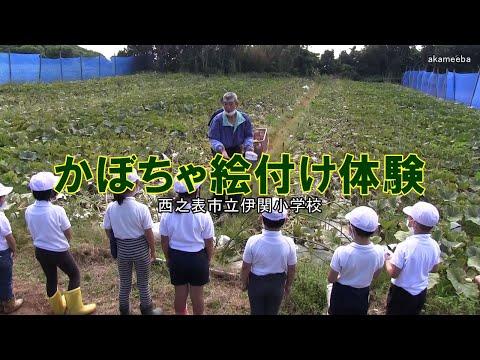 種子島の学校活動:伊関小学校かぼちゃ絵付け体験令和2年