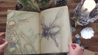 Le Monde De Brian Froud - 🧚‍♀️Lady Cottingtons Pressed Fairy Book🧚‍♀️