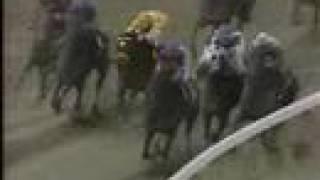 Cigar - 1995 Breeders Cup Classic
