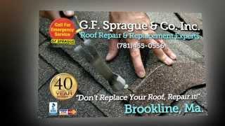 Destination Guide: Brookline (Massachusetts, Norfolk County