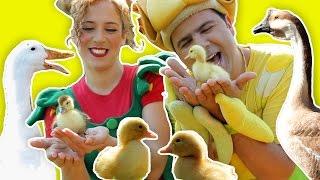 فوزي موزي وتوتي – أغنية البطة البطبوطة – The Duck Song