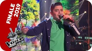 Michael Bublé - Feeling Good (Davit) | Finale | The Voice Kids 2019 | SAT.1