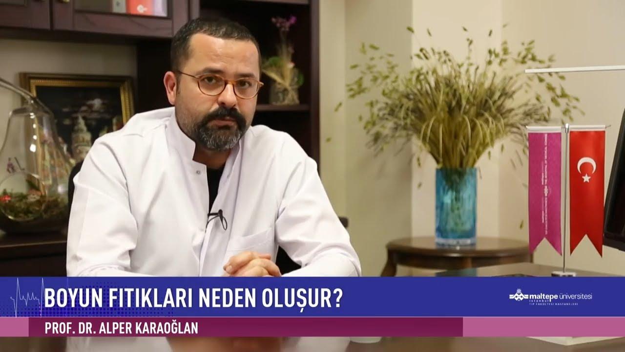 Prof. Dr. Alper Karaoğlan