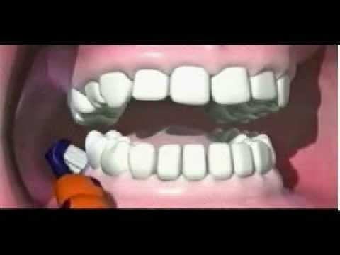 أحسن طريقة لفرش الأسنان