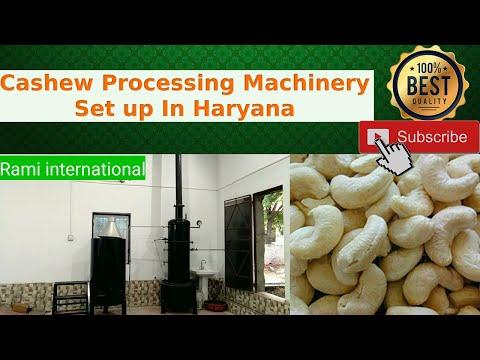 Cashew Electrical Borma Dryer