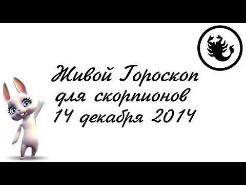 Китайский гороскоп на год петуха 2017 для всех знаков