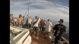 Yellowtail fishing-tanner bank