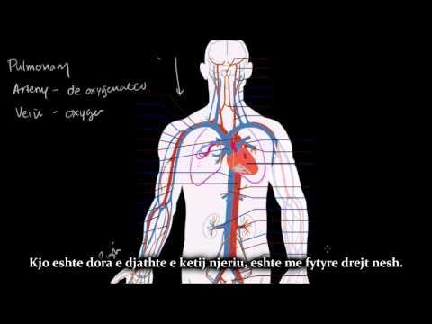 Krizë hypertensive shenjat e pash