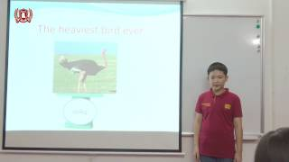 [WSI] I2.2 Minh Khôi - Presentation
