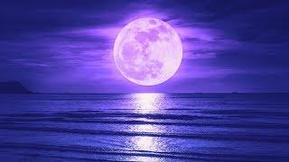 Sleep Music 528Hz Miracle Tone | Fall Asleep Fast and Easy | Deep Healing Sleep | Tranquil Sleep