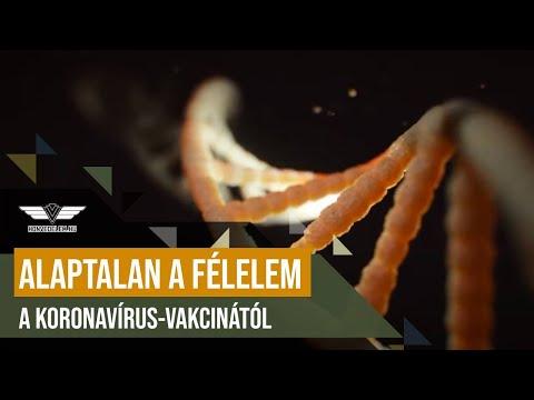 Platyhelminthes példák állatokra