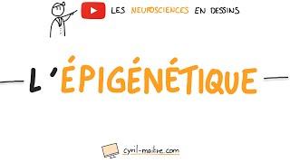 Vignette de [VIDÉO] L'ÉPIGÉNÉTIQUE - Les neurosciences en dessins